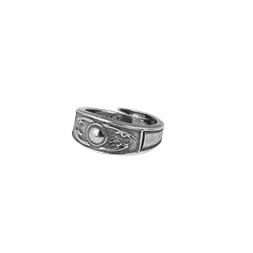 Gokstad ring 51/53 16/18